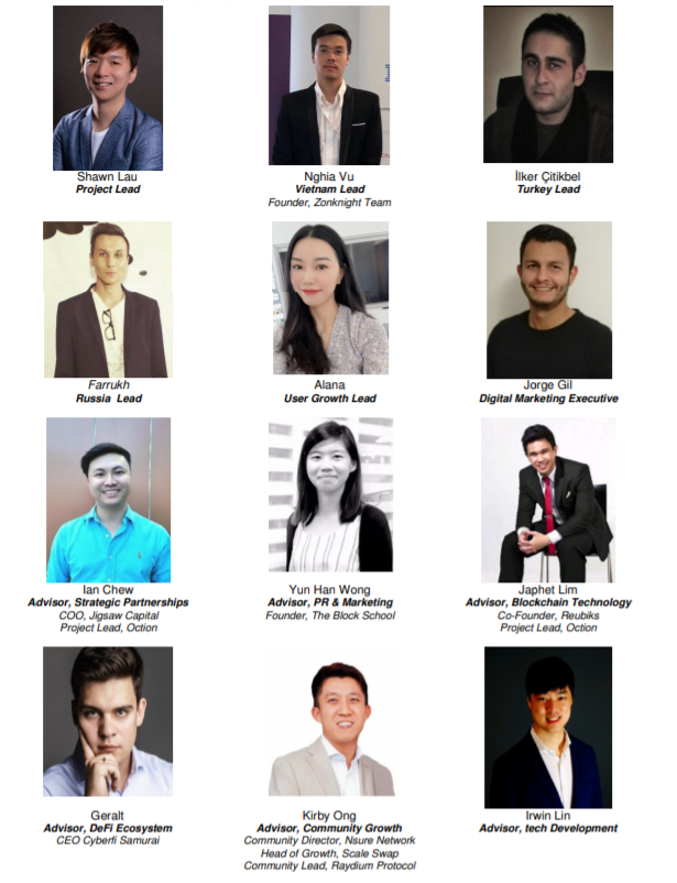 team and advisors of Metaseer on Solana and Binance smart chain BSC